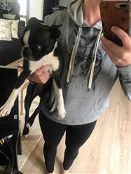 Jessica E. verified customer review of Scout the Boston Terrier - Grey French Terry Hooded Sweatshirt