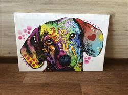 Britney Z. verified customer review of 3D Print Colorful Dachshund Wall Art