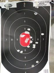 LoneWanderer360 verified customer review of 357 Sig Target/Practice