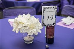 Tracey Q. verified customer review of 120 PURPLE Polyester Round Tablecloth