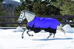 Jessica H. verified customer review of Equi-Sky 600D Medium Weight Turnout Blanket