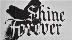 Tibor T. verified customer review of Shine Forever Tee