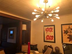 Candice H. verified customer review of Sputnik Style Chandelier