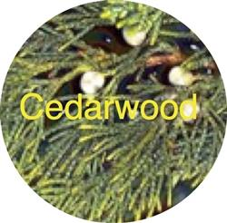 Dawn Herdering  verified customer review of Cedarwood Handcrafted Goat Milk Soap or Face and Body Cream