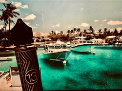 Anonymous verified customer review of 13th Floor Elevapors - Bermuda - 60ml
