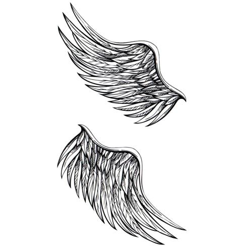 Lil Wings V2
