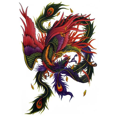 The Colourful Phoenix