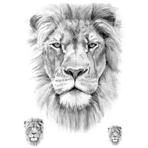 Realistic Lion (5 pieces)