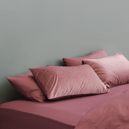 Egyptian Cotton Fitted Sheet Set - Rose