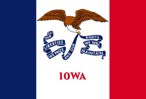 Iowa Vintage Wood Flag