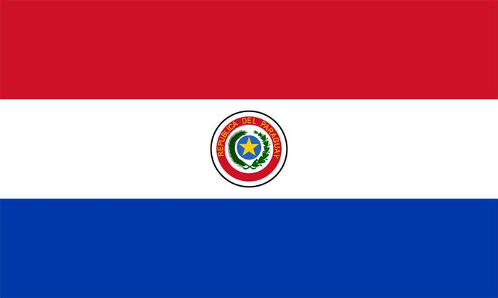 Paraguay Wood Flag