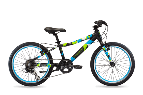 Guardian 20 Inch Large Bikes