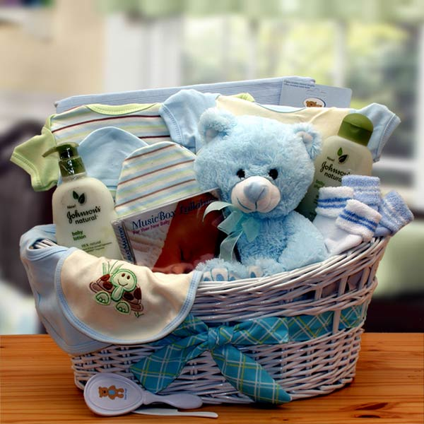 Deluxe Organic New Baby Gift Basket - Blue (GBDS4)