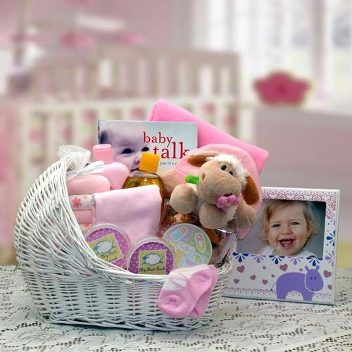Welcome Bassinet - Pink (#GBDS101)
