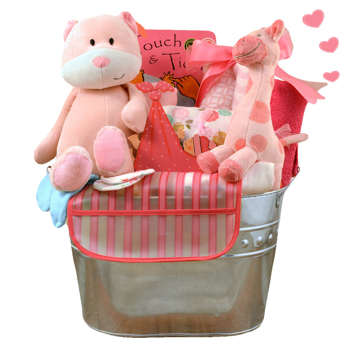 Welcome Home Newborn Baby Girl Gift Basket (#CBB1)