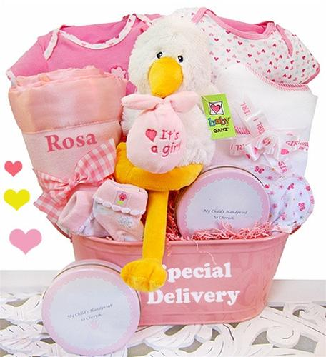 Special Delivery - Baby Girl Basket (#BBC6)