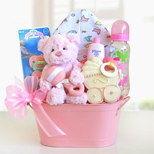 Cuddly Welcome Gift Basket - Girl (#GC12)