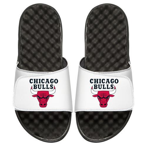 Chicago Bulls Primary