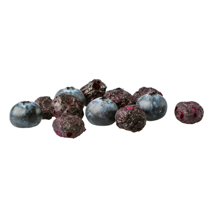 Freeze Dried Organic Blueberry Snack Pouch