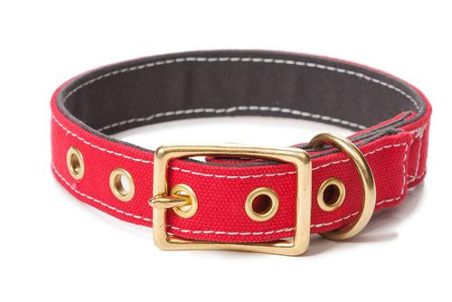 Canvas Dog Collar Red/Grey