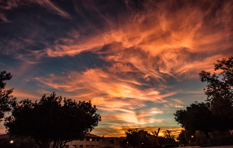 tamer-sunrise_2