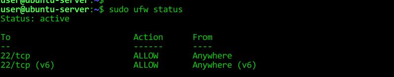 Check the Firewall Status