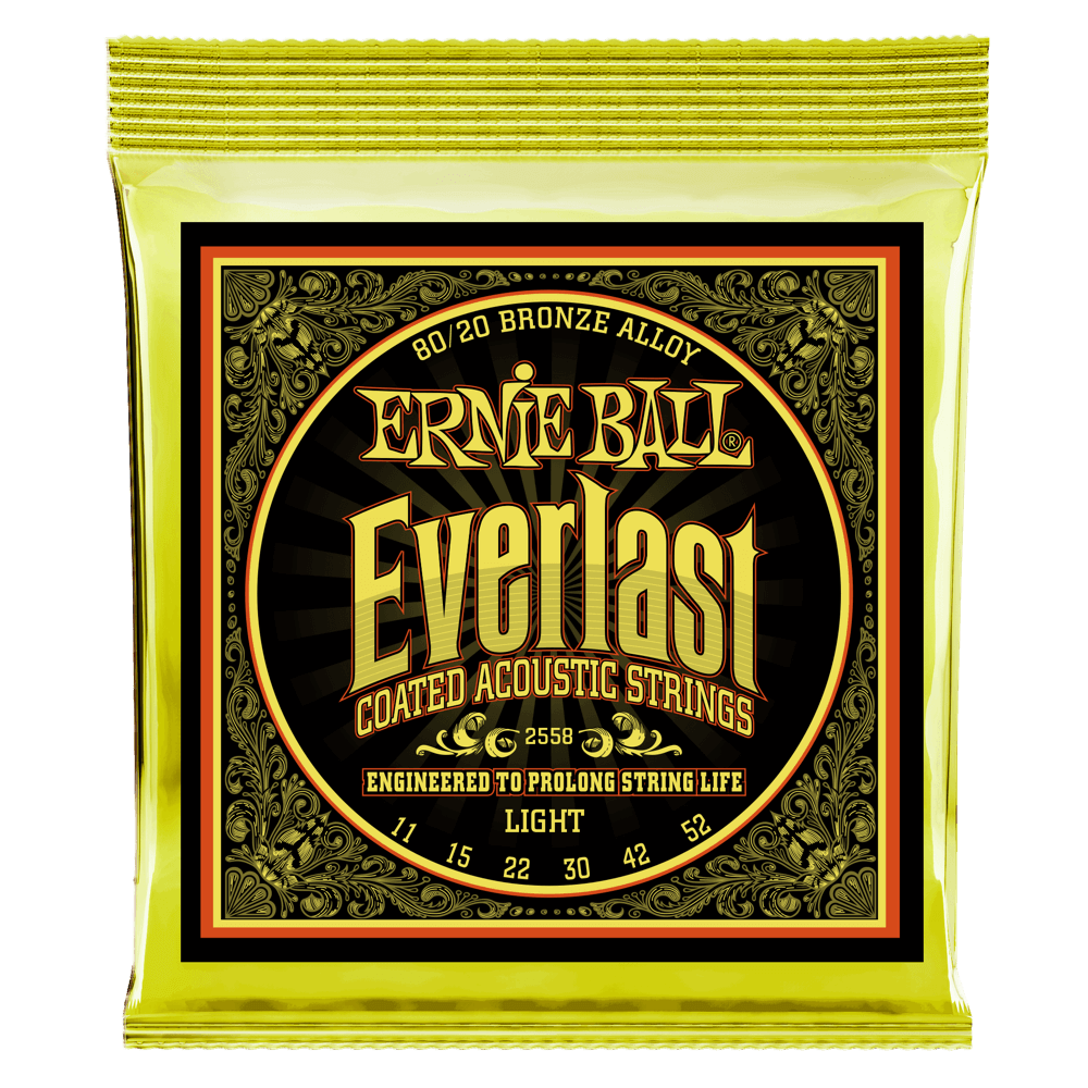 Acoustic Guitar Strings Ernie Ball