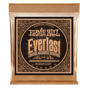 Everlast Coated Phosphor Bronze Cordes pour Guitare Folk