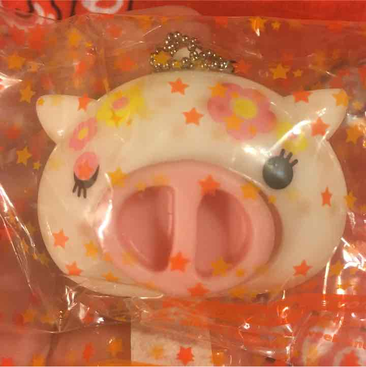 Squishy Nose : Ibloom Flower Print Piggy Nose Squishy! - Mercari: BUY & SELL THINGS YOU LOVE