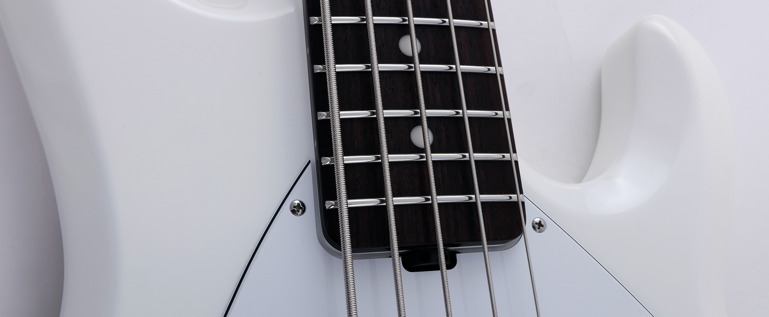 StingRay5 Neck Through Slide