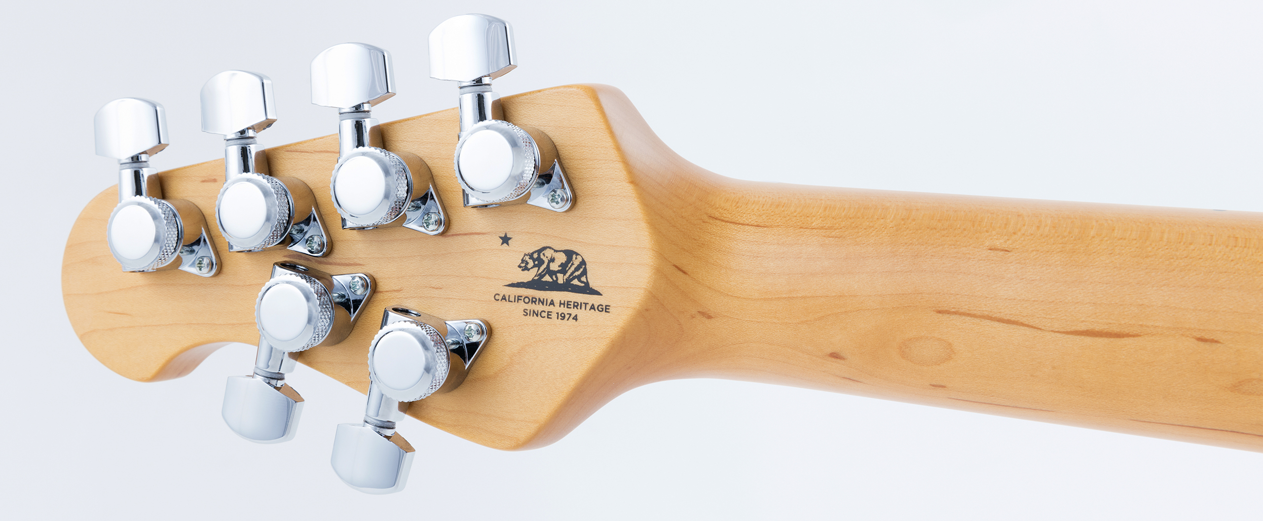 StingRay Guitar Slide
