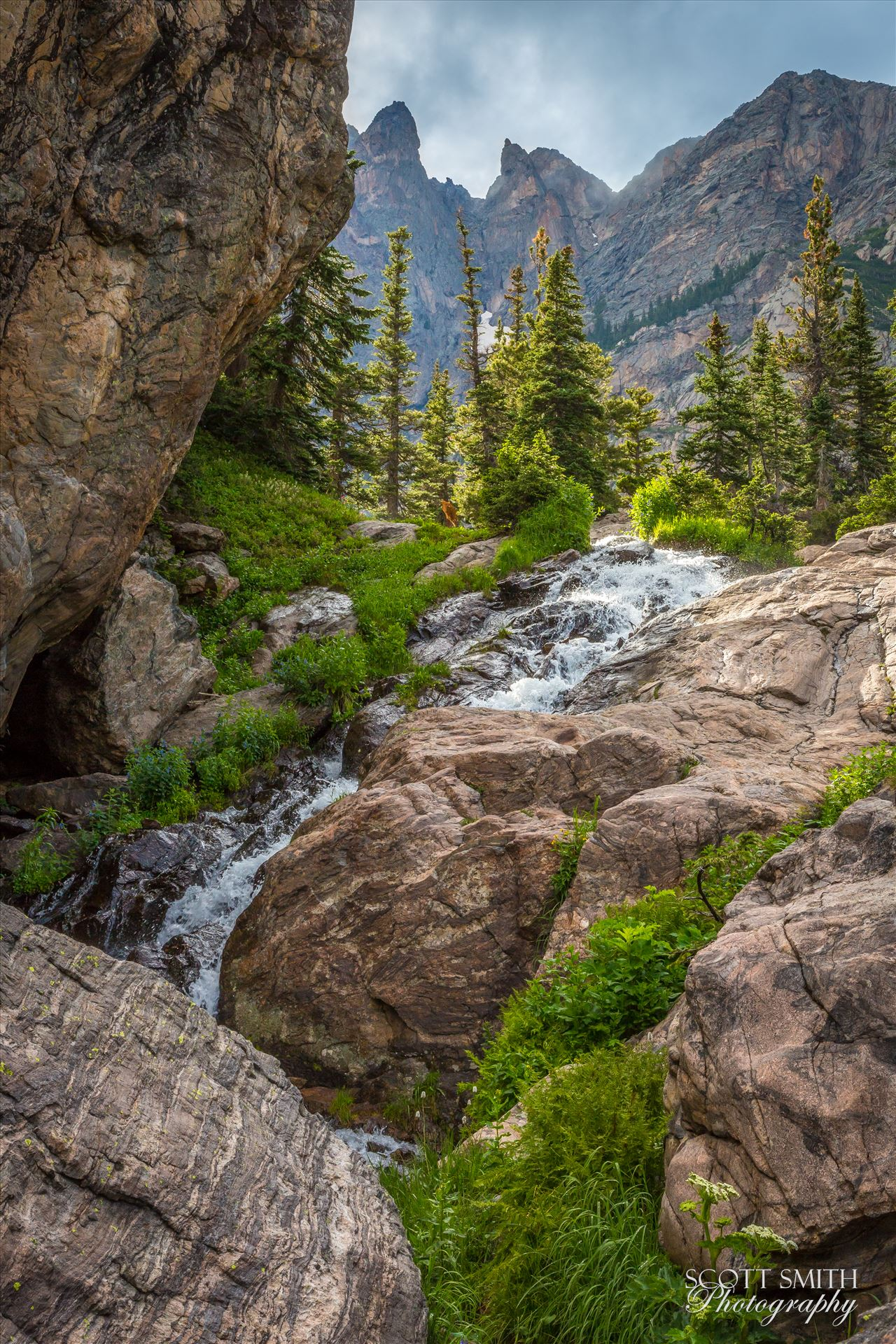 Bear Lake Trail 3 - From Bear Lake Trail, Rocky Mountain National Park, outside of Estes Park, Colorado. by D Scott Smith