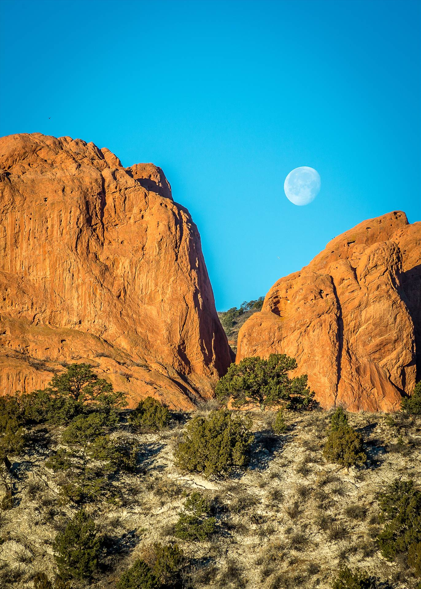Moon Setting between the Gods - Moon setting over the Garden of the Gods. by D Scott Smith
