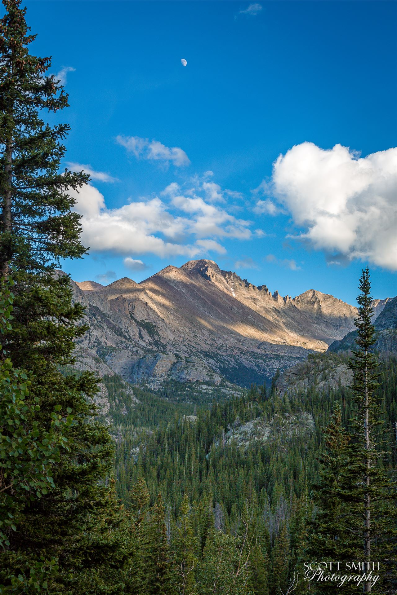 Bear Lake Trail 1 - From Bear Lake Trail, Rocky Mountain National Park, outside of Estes Park, Colorado. by D Scott Smith