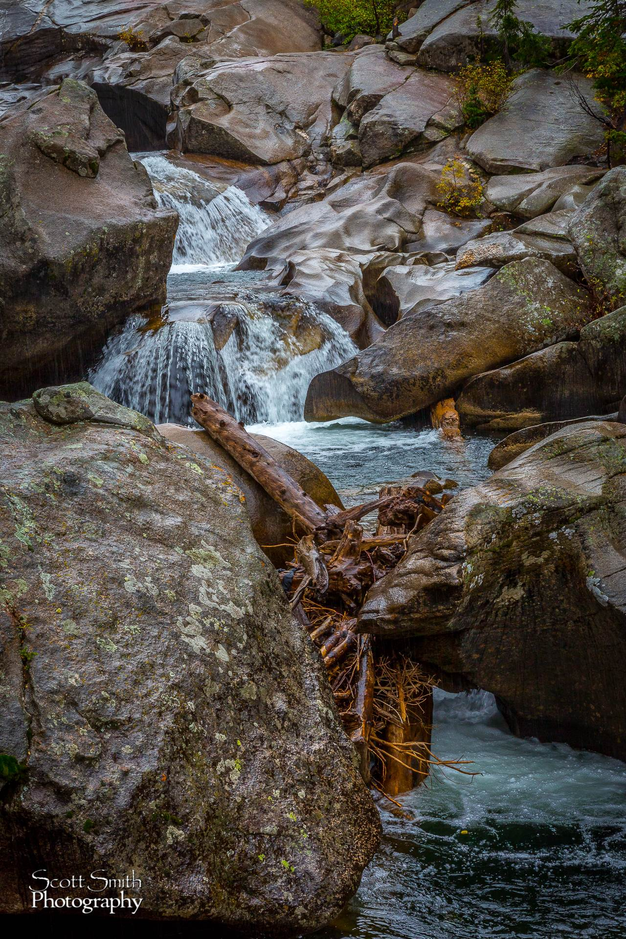The Grottos - The Grottos outside of Aspen on Independence pass. by D Scott Smith