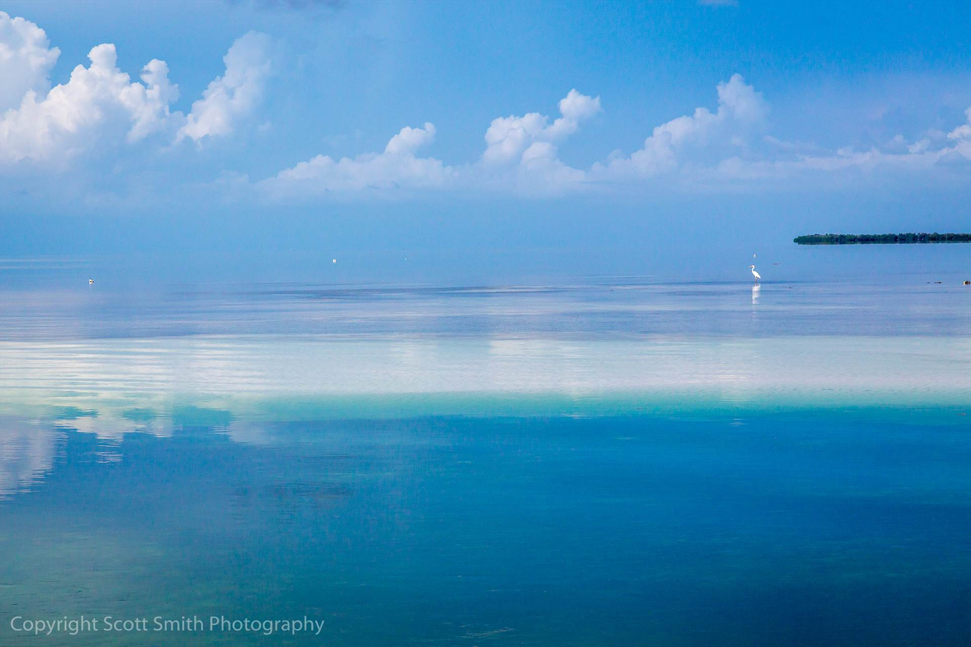 Blended Horizon - The horizon blends in with the water in this shot from a sand bar  west of Key West in the Gulf of Mexico. by D Scott Smith