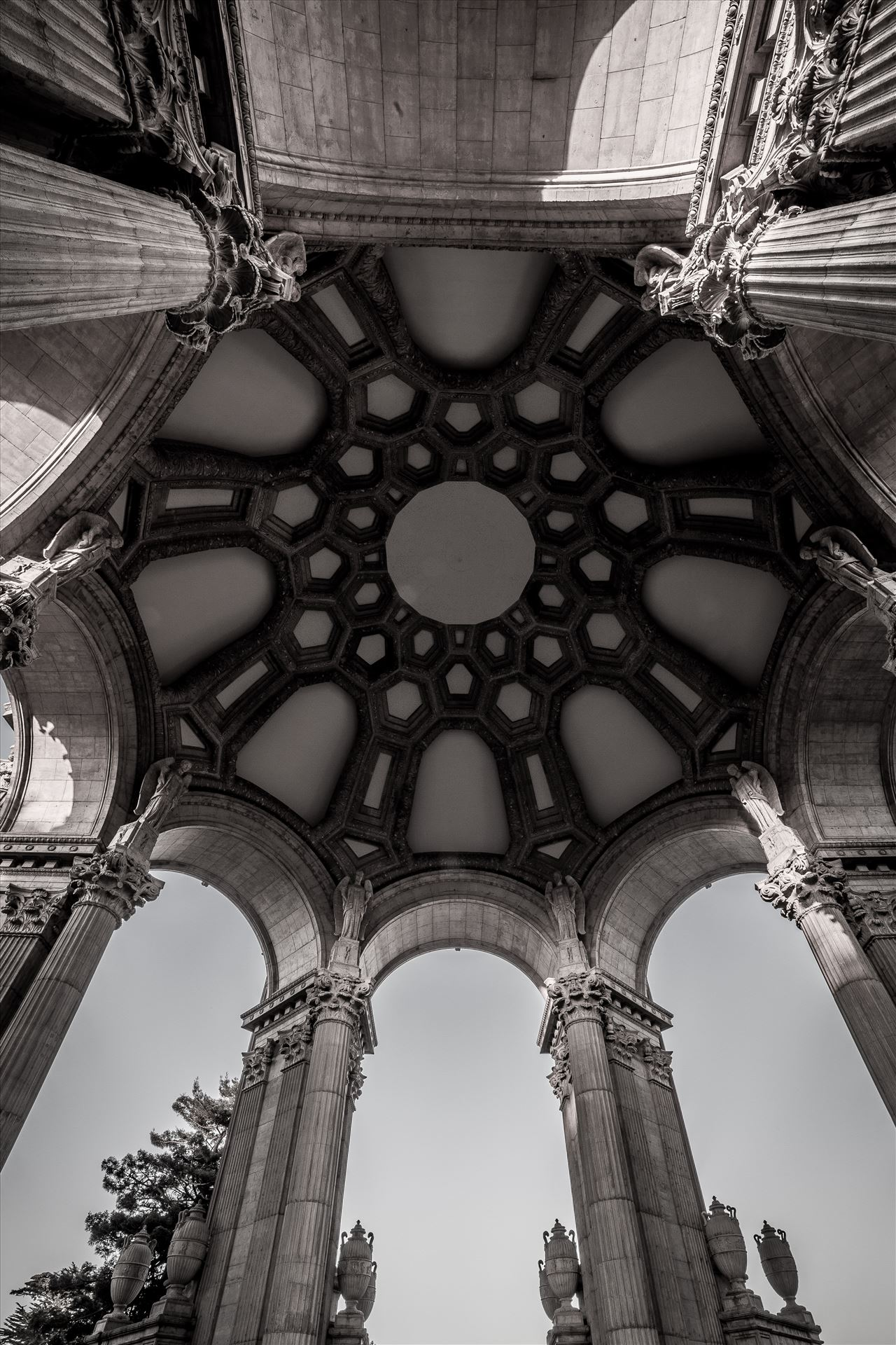 Palace of Fine Arts 3 -  by D Scott Smith