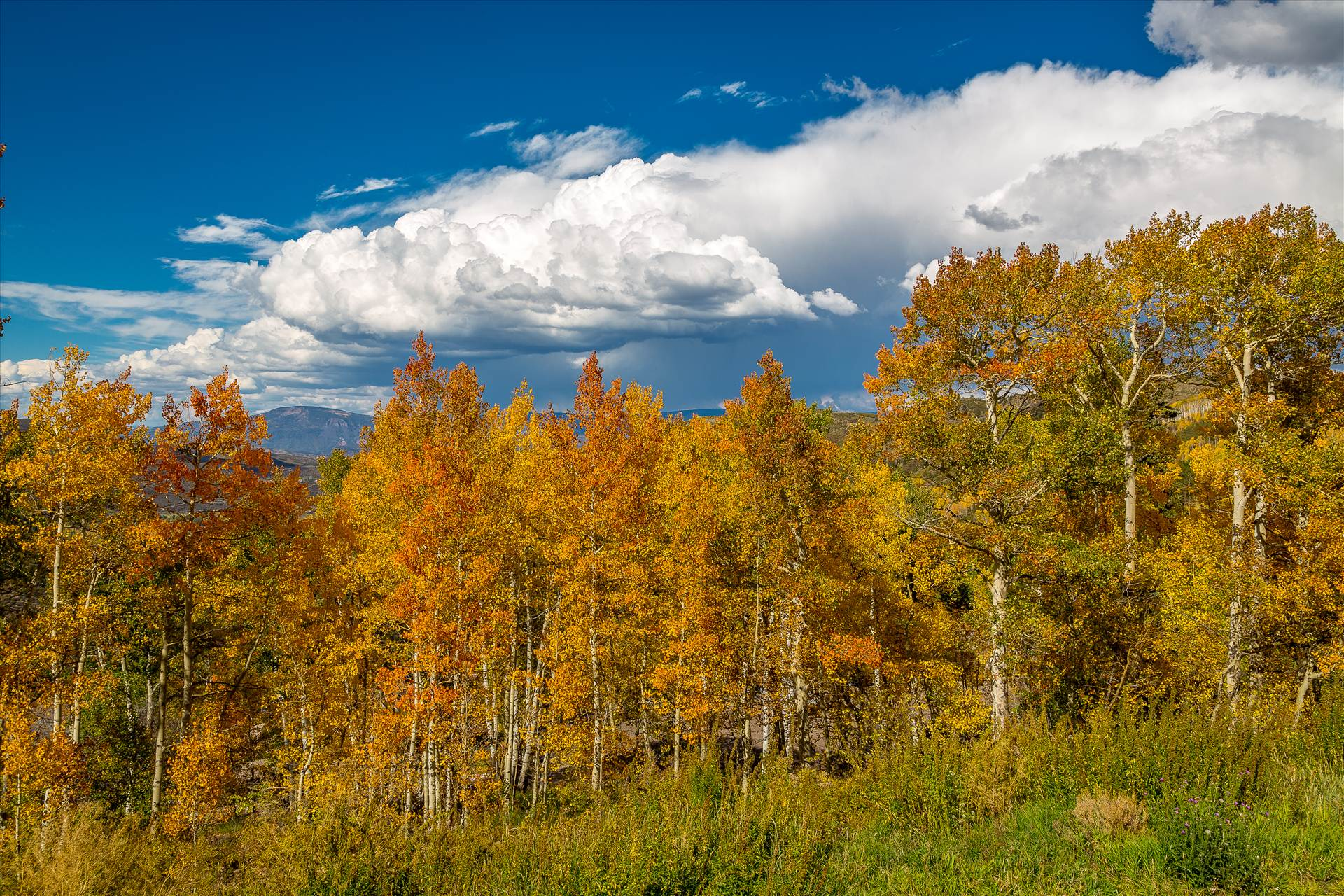 Hiking near Snowmass -  by D Scott Smith