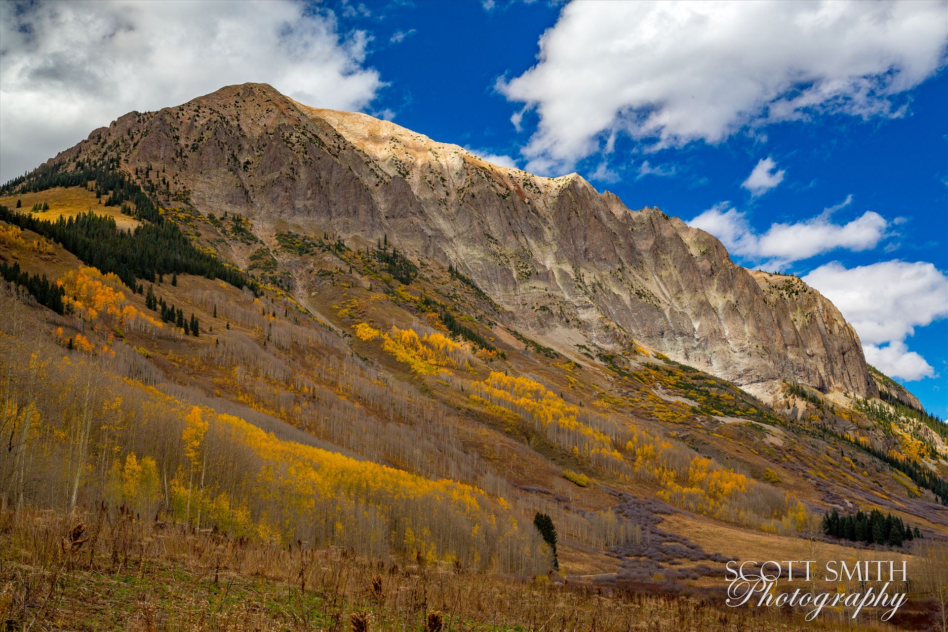 Gothic Mountain - Fall colors on Gothic mountain, near Crested Butte Colorado. by D Scott Smith