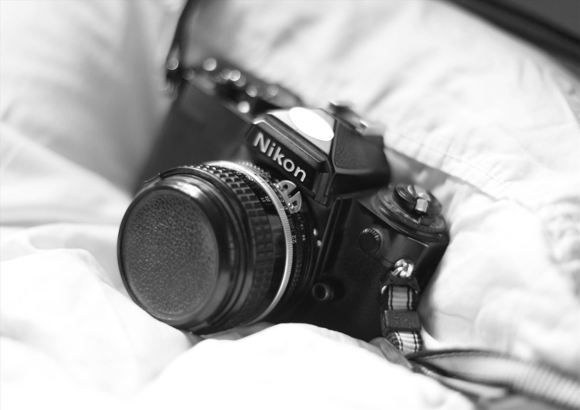 Film on Digital - An old Nikon SLR, captured by a modern digital camera. by D Scott Smith