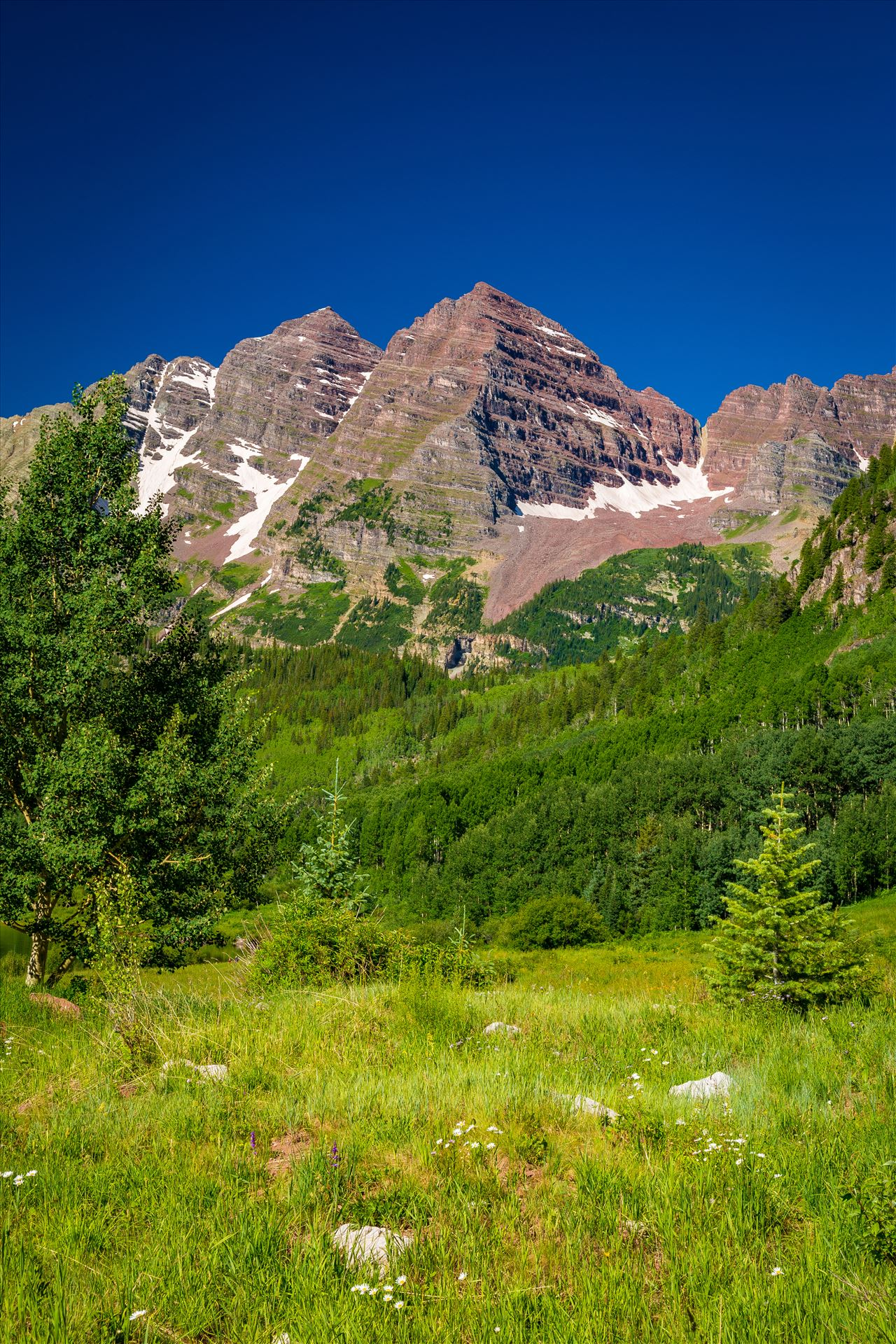 Maroon Bells in Summer No 05 -  by D Scott Smith