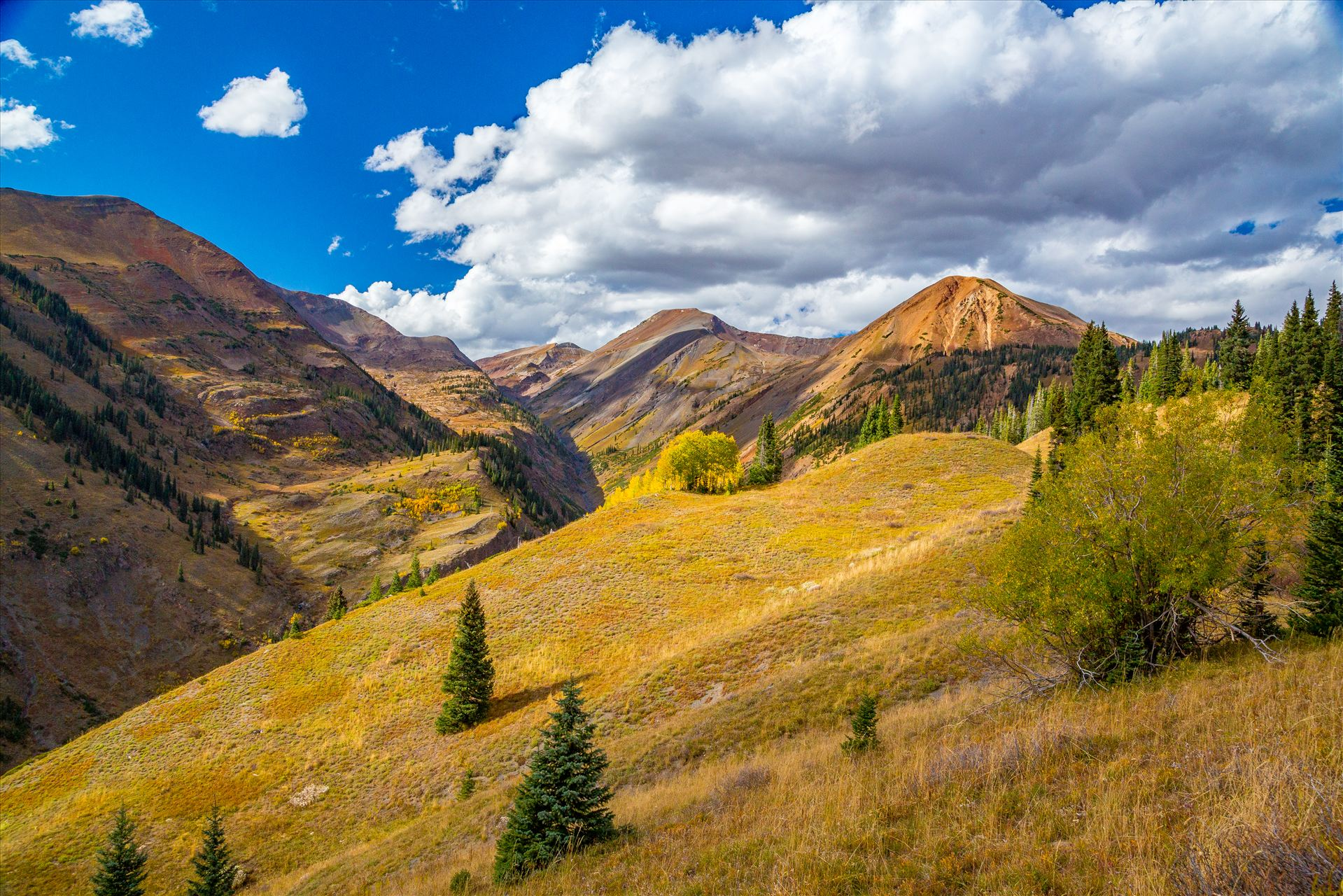 Schofield Pass Summit - View of Mount Baldy from near the summit of Schofield Pass. by D Scott Smith