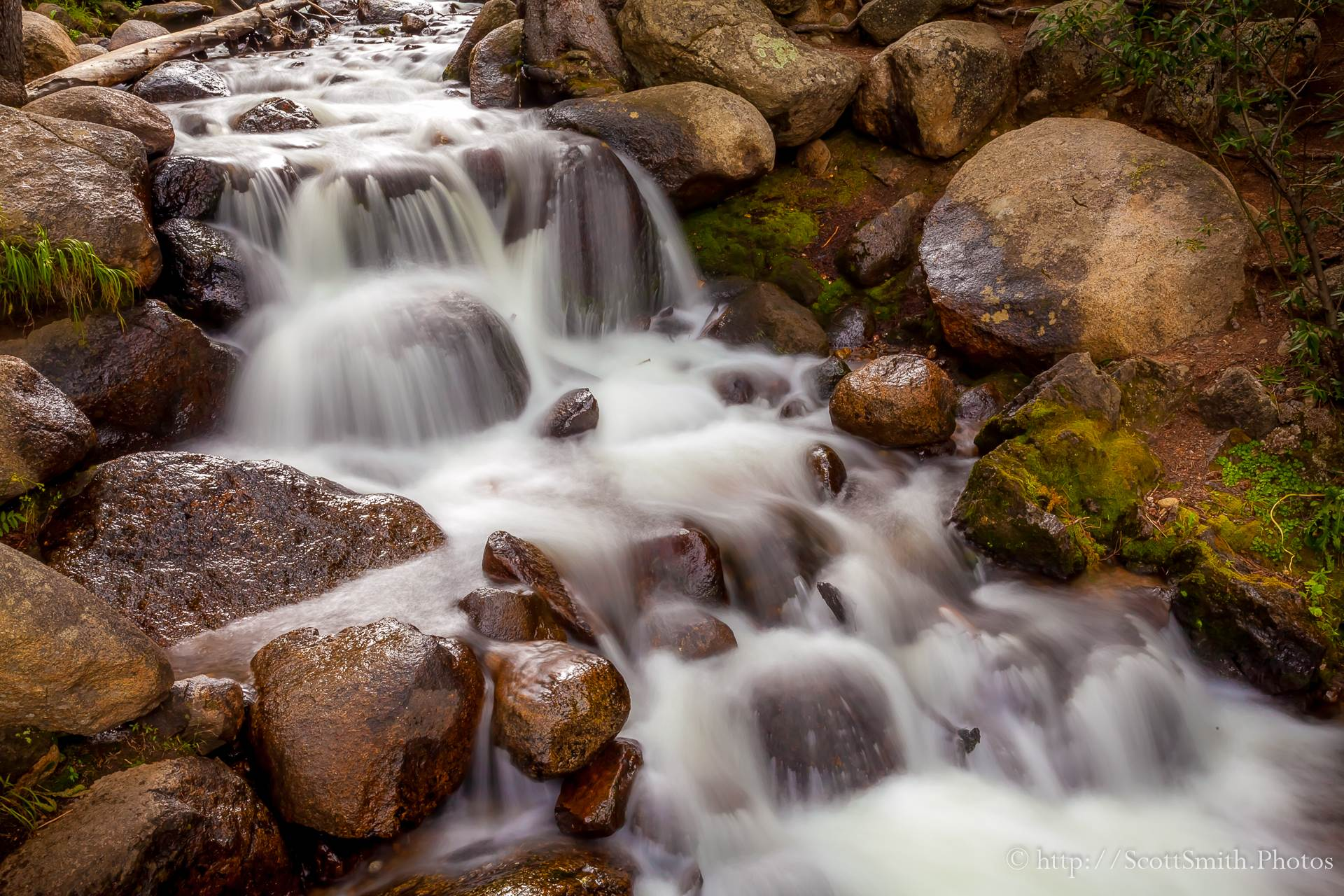 Mt Evans Waterfall - A small stream trickles down the side of the mountain. by D Scott Smith