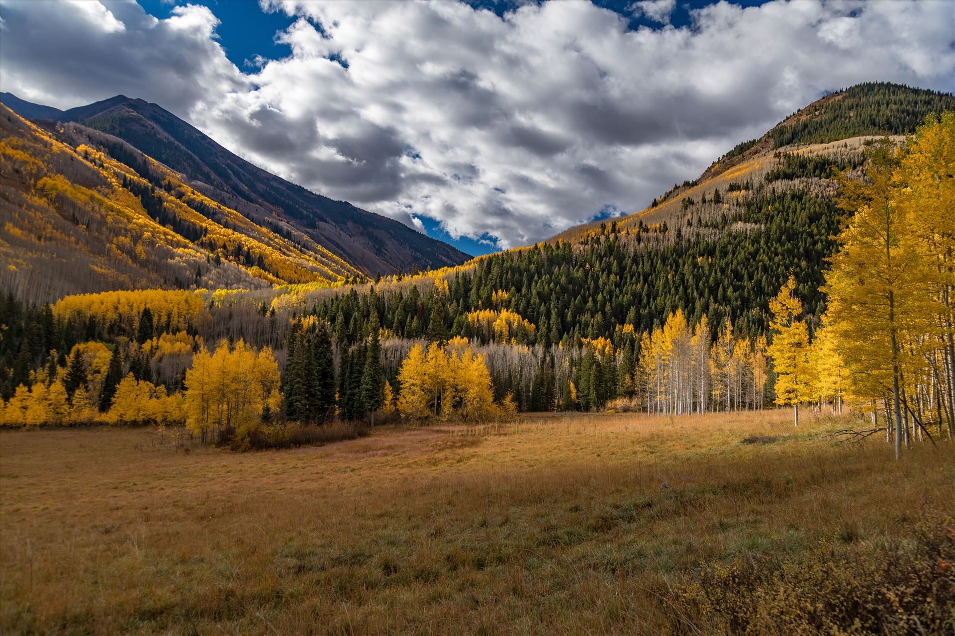 Fall in Aspen Snowmass Wilderness Area No 1 -  by D Scott Smith