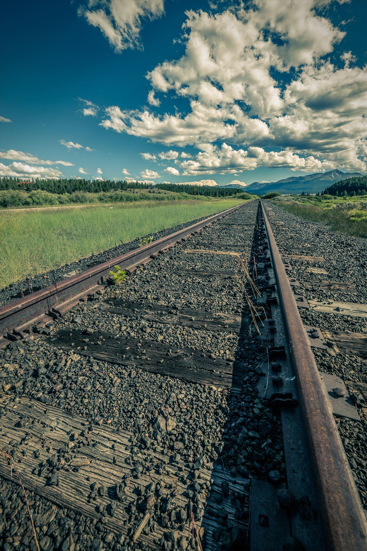 On the Tracks - Railroad tracks outside of Leadville, Colorado. by D Scott Smith