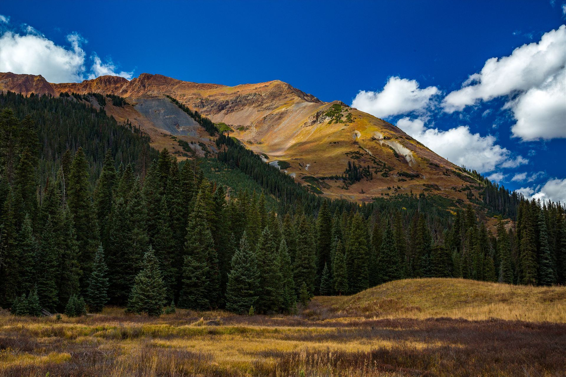 Mount Baldy - Mount Baldy from Gothic Road, north of Crested Butte. by D Scott Smith