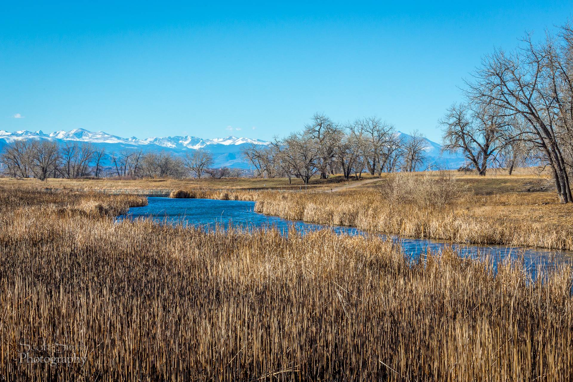 Rocky Mountain Arsenal Wildlife Refuge View - At the Rocky Mountain Arsenal Wildlife Refuge. by D Scott Smith