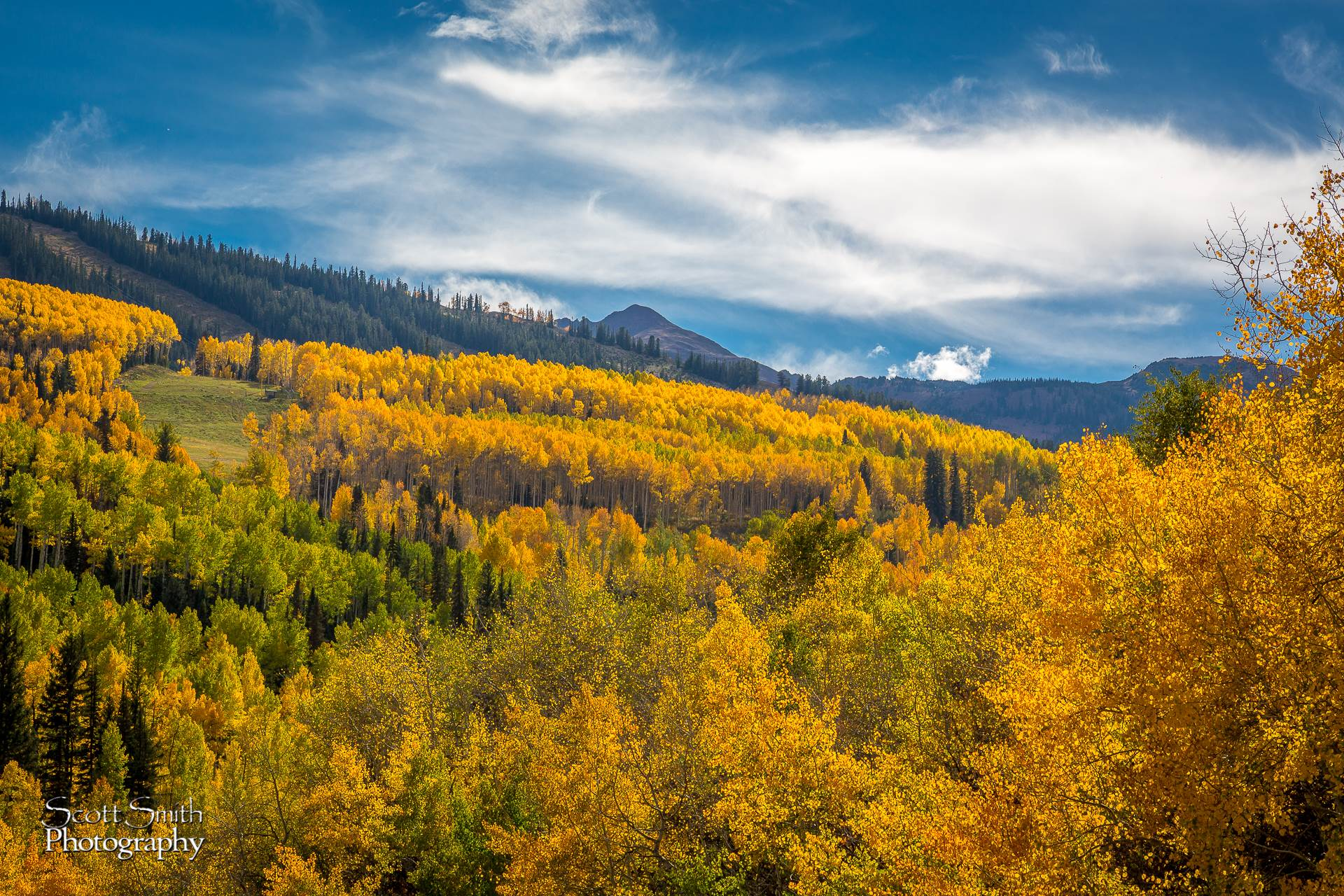 Snowmass Colors - The fall colors seen from Snowmass, Colorado. by D Scott Smith