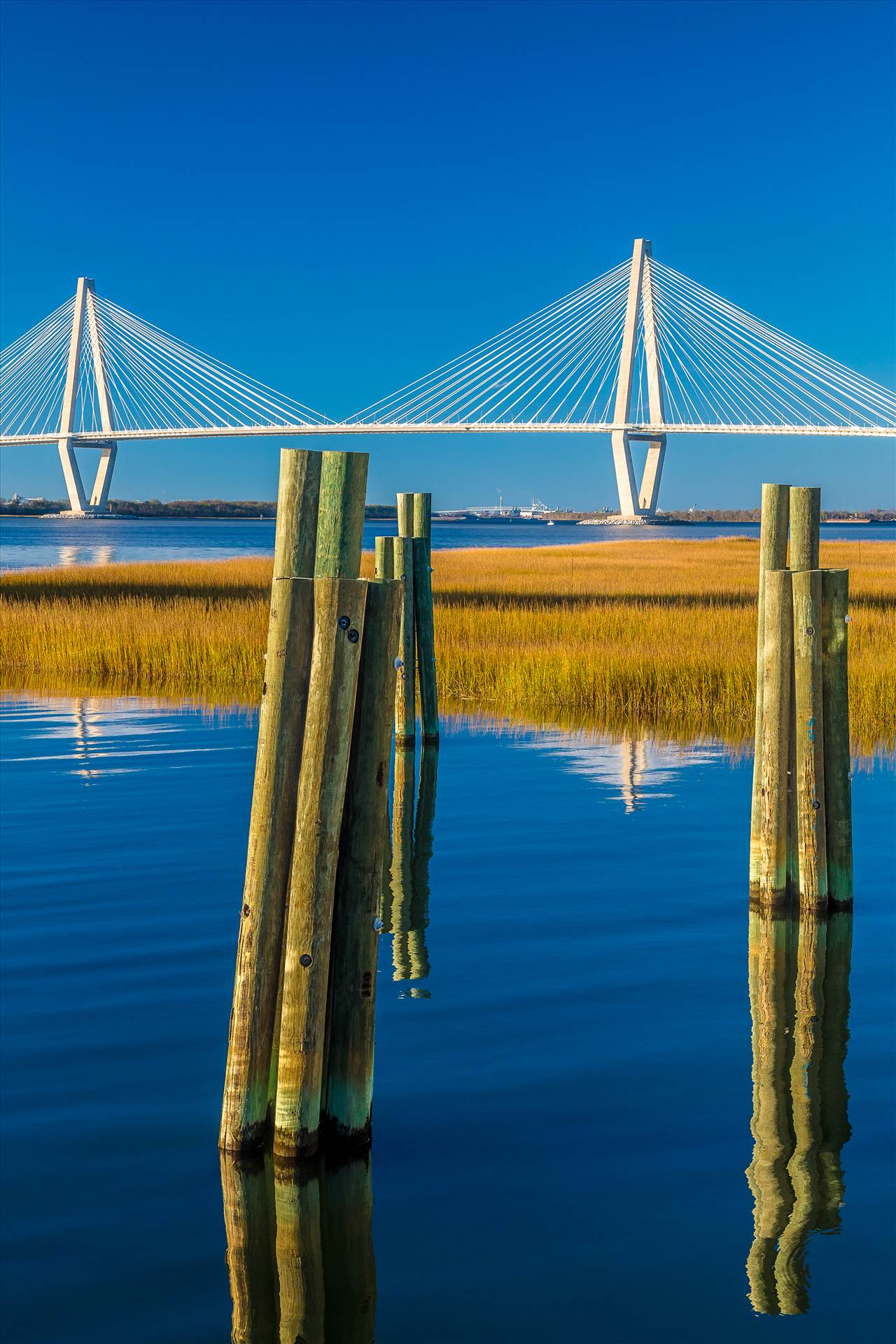 Arthur Ravenel Jr. Bridge From Patriots Point - From Patriots Point Naval & Maritime Museum in Charleston, South Carolina. by D Scott Smith
