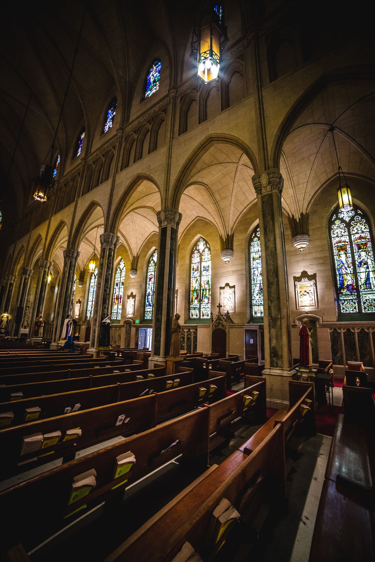 St. Patricks Cathedral 2 -  by D Scott Smith